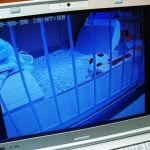 PLANEX ネットワークカメラ スマカメ CS-QR20 Windows