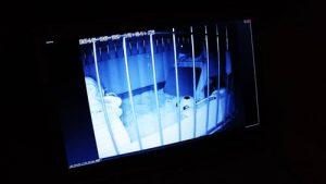PLANEX ネットワークカメラ スマカメ CS-QR20 暗視撮影