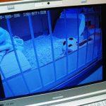 ネットワークカメラ PLANEX CS-QR20設置。夜行性動物の観察。